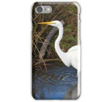 Just Right (Great Egret) iPhone Case/Skin