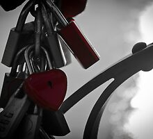 Love Padlocks by Alexandra Vaughan Photography
