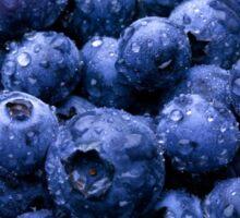 blueberries  Sticker
