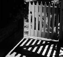 Morning shadows by Norman Repacholi