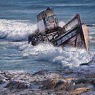 Boat Wreck by Irene  Burdell