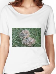 Frost covered dried grass Women's Relaxed Fit T-Shirt