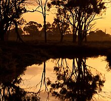 Reflections - Tongala Victoria Australia by Norman Repacholi