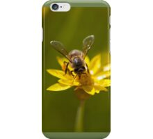 Bee on a Yellow Flower iPhone Case/Skin
