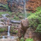 Rocks & Ferns At Wentworth Falls by Michael Matthews
