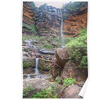 Rocks & Ferns At Wentworth Falls Poster