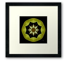 Emerald Green Framed Print