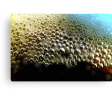Root Beer Bubbles Canvas Print