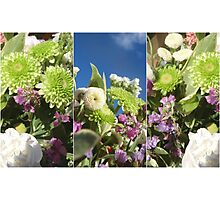 Green White and Purple Flowers Photographic Print