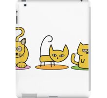 Three cats - Dynamite, Judo, Sleepy iPad Case/Skin