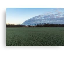Delicate Young Crops - Coordinated Clouds and Furrows Canvas Print
