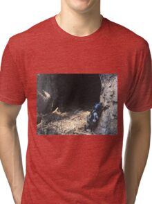 Brickography - By a Tree Tri-blend T-Shirt