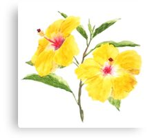yellow hibiscus watercolor painting  Canvas Print