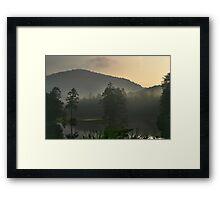 Forest Breath Framed Print