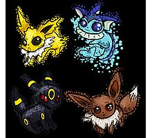 Pokemon - Eevee Evolutions Photographic Print