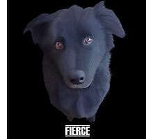 Portrait of my Dog (Fierce) Photographic Print