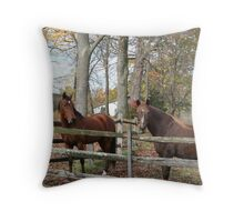 Should we tell her? Throw Pillow