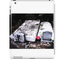 Princess Plantation 41 iPad Case/Skin