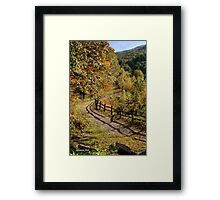 Broken Fence Rail beside a Path Framed Print