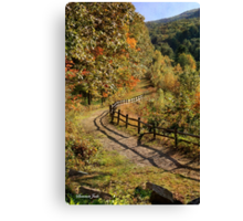 Broken Fence Rail beside a Path Canvas Print