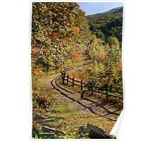 Broken Fence Rail beside a Path Poster