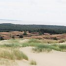 Sand Dunes of Lithuania by mlleruta