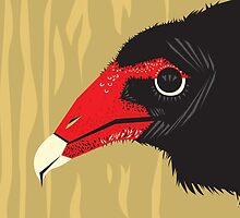 Crikey the Turkey Vulture by InRC