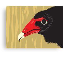 Crikey the Turkey Vulture Canvas Print
