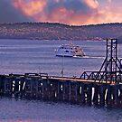 Morning In Frenchman's Bay by Nancy Richard