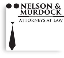 Nelson and Murdock Canvas Print