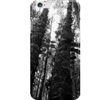 Birches in Black and White iPhone Case/Skin