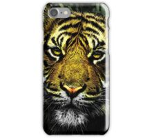 Tiger HDR iPhone Case/Skin