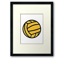 Water polo ball Framed Print