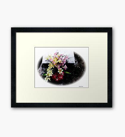 Princess Plantation 49 Framed Print