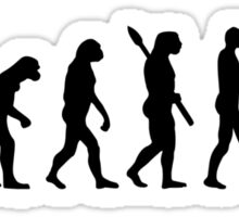 Evolution Water Polo Sticker