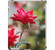 Red Diamond and Lace iPad Case/Skin