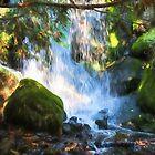Hidden Falls In Autumn by AutumnMoon