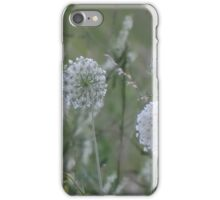 wild grasses 10 iPhone Case/Skin