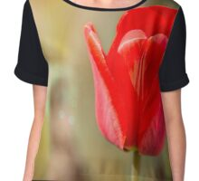 Red Tulip in Magic Atmosphere Chiffon Top