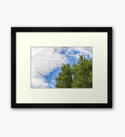 Cloudy Sky Over the trees Framed Print