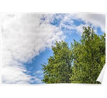 Cloudy Sky Over the trees Poster