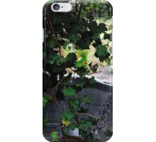 Princess Plantation 57 iPhone Case/Skin