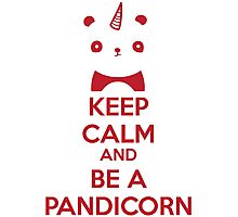 Keep Calm And Be A Pandicorn Photographic Print