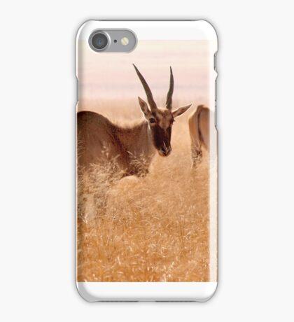 Backlit Eland - Drakensberg, South Africa iPhone Case/Skin