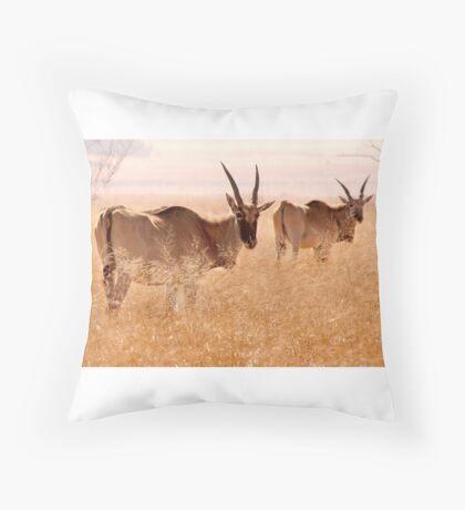 Backlit Eland - Drakensberg, South Africa Throw Pillow