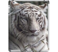 White Bengal Tiger iPad Case/Skin