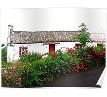 Abandoned Cottage, Inishowen Peninsular, Donegal, Ireland Poster