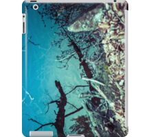 Random Project 69 [iPad case] iPad Case/Skin