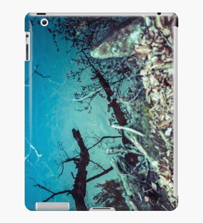 Random Project 69 [iPad case] iPad Case/Skin