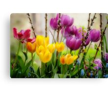 Spring Flowers in Balcony Planter Canvas Print